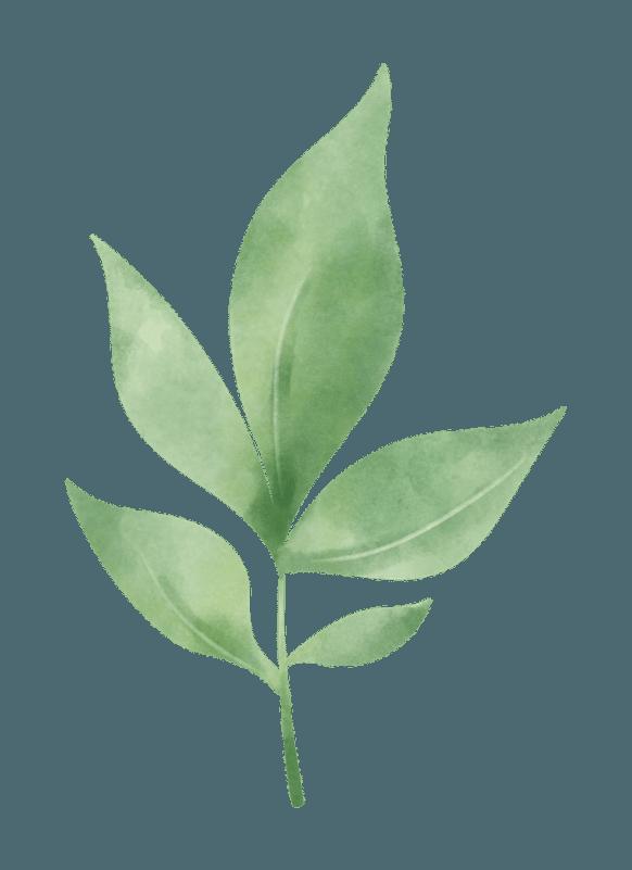 Viscose EcoVero matière Eco responsable utilisée par April & C